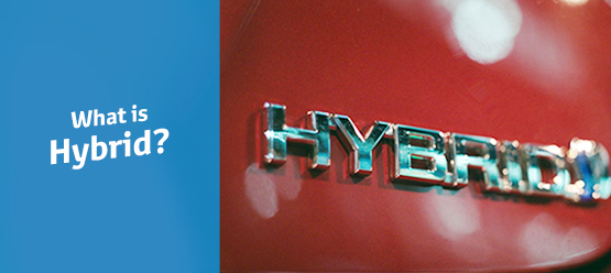 What is Hybrid?