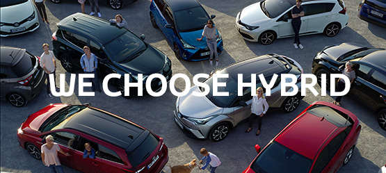 We Choose Hybrid